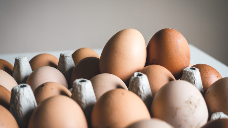 Куриные яйца. Фото Jakub Kapusnak / Unsplash