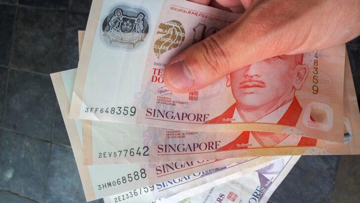Сингапурские доллары. Фото Aleksandr Zykov