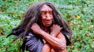 Неандерталец. Фото Неандертальский музей