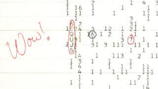 Распечатка сигнала. Фото NAAPO