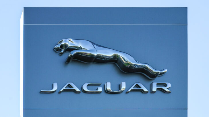 Jaguar. Фото Viktor Forgacs / Unsplash