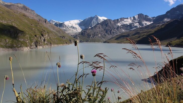 Ледники в Альпах. Фото Thomas Pralong