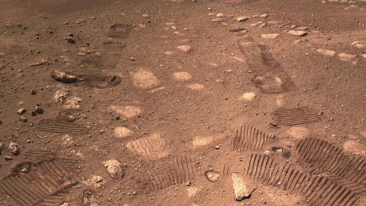 Следы ровера Perseverance на поверхности Марса. Фото NASA/JPL-Caltech/Kevin M. Gill