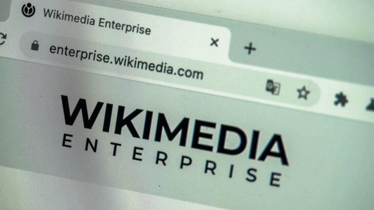 Wikimedia Enterprise. Фото Константин Завьялов / gdeichto.ru