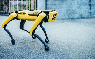 Робот-собака Boston Dynamics Spot. Фото Web Summit (CC BY 2.0)