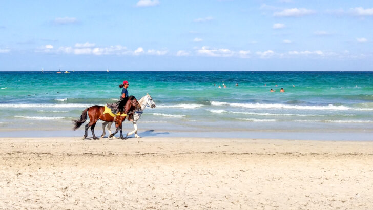 Тунис. Фото Константин Завьялов / gdeichto.ru