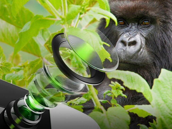 Защитные стекла Corning Gorilla Glass DX. Фото Corning
