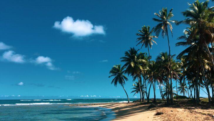 Пляж в Доминикане. Фото John Prefer / Unsplash